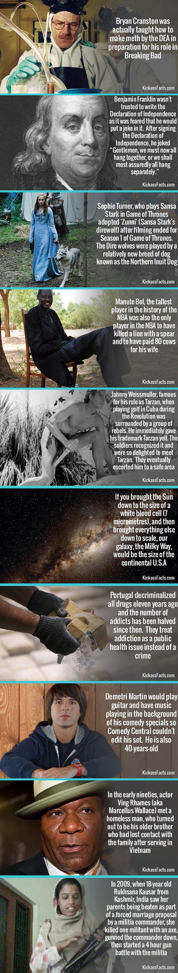 10 More Random Interesting Facts