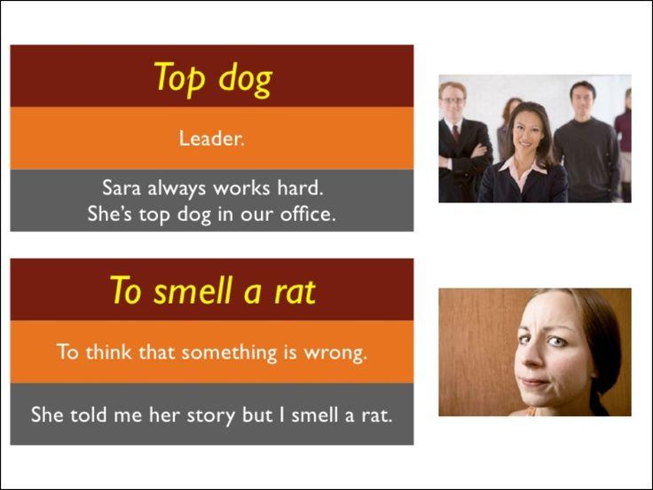 English Idioms 5