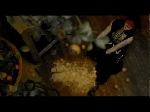 Love this beautiful fantasy video by Massive Attack - Paradise Circus (The Fall Video + Lyrics)
