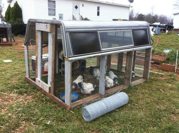 Image result for how to turn pickup canopy into chicken house