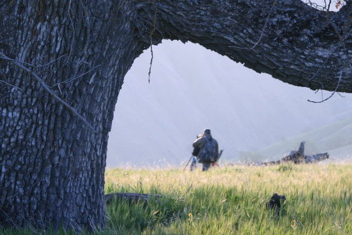 Oak by James Burrow on Capture Kern County // A huge oak tree framing a famous Photographer at Wind Wolves Preserve.