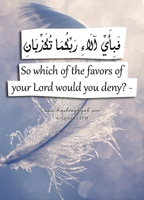Is the reward of goodness anything but goodness? Which of your Lord's marvels can you deny? [55:60-61]