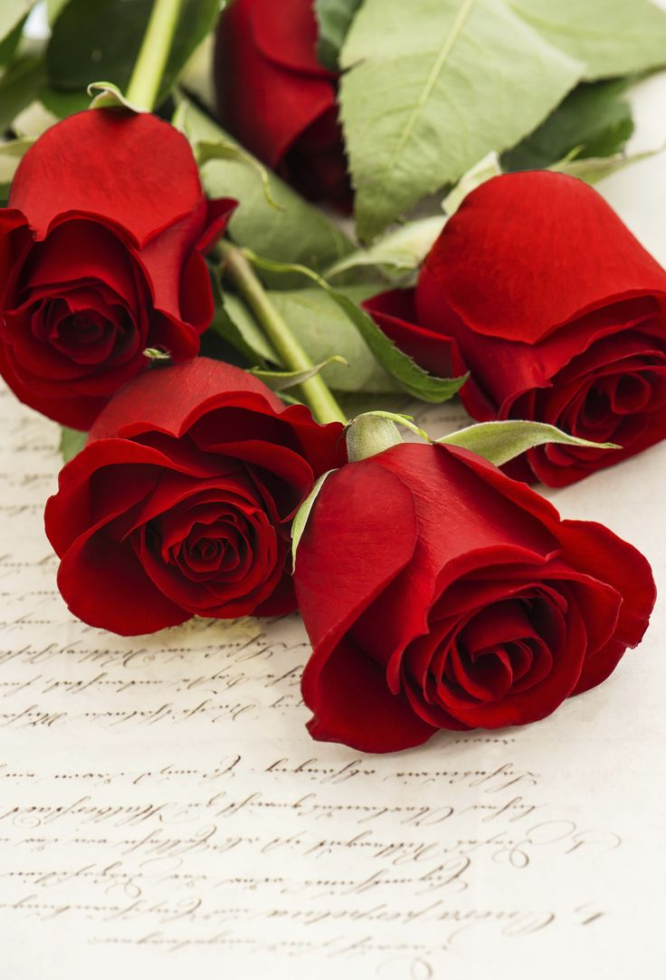 Red Roses on old love letter