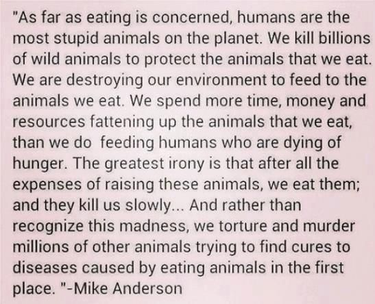 """""""As far as eating is concerned, humans are the most stupid animals on the planet."""" - Imgur"""