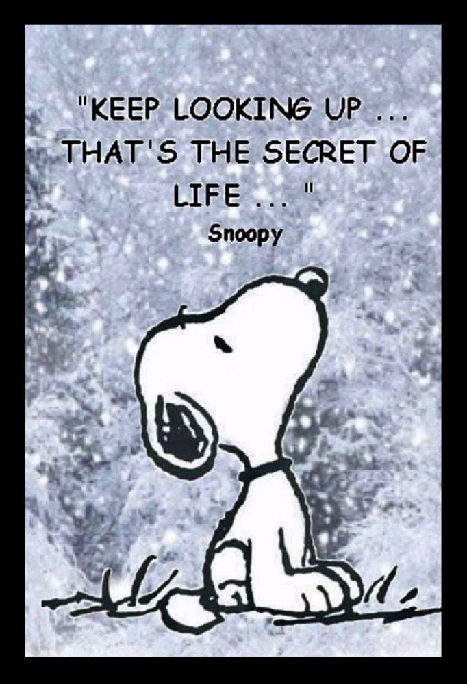 Snoopy Quote keep looking up iphone case