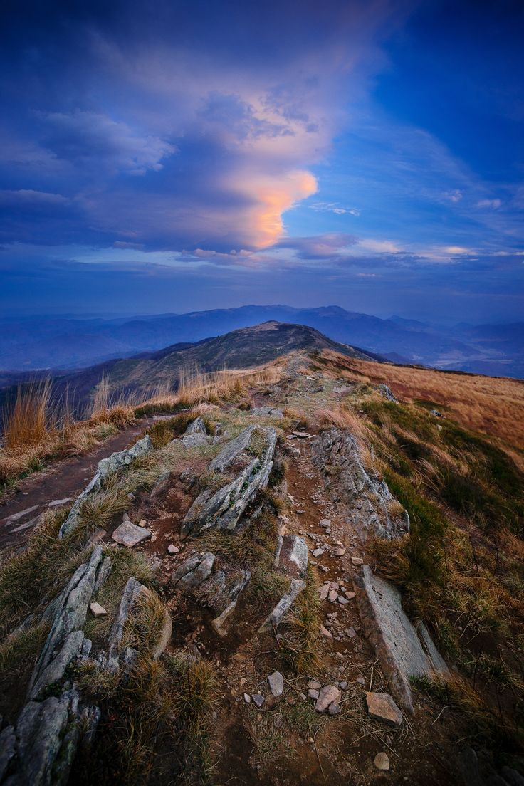 Blues. - Bieszczady National Park (Poland) - UNESCO East Carpathian Biosphere Reserve.