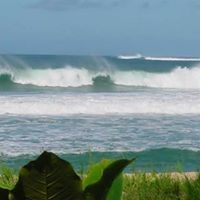 The increasing popularity of Kauai Vacation Rentals as a value-packed alternative to pricier hotels has led to an abundance of options that can be overwhelming. Visit this site http://www.beachkauai.com/ for more information on Kauai Vacation Rentals.