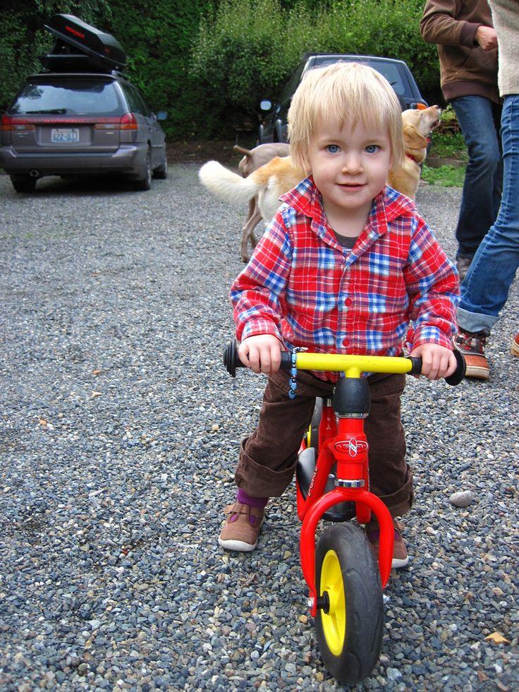 Rowerek biegowy Puky LR M http://www.aktywnysmyk.pl/50-rowerki-biegowe-puky-lr-m