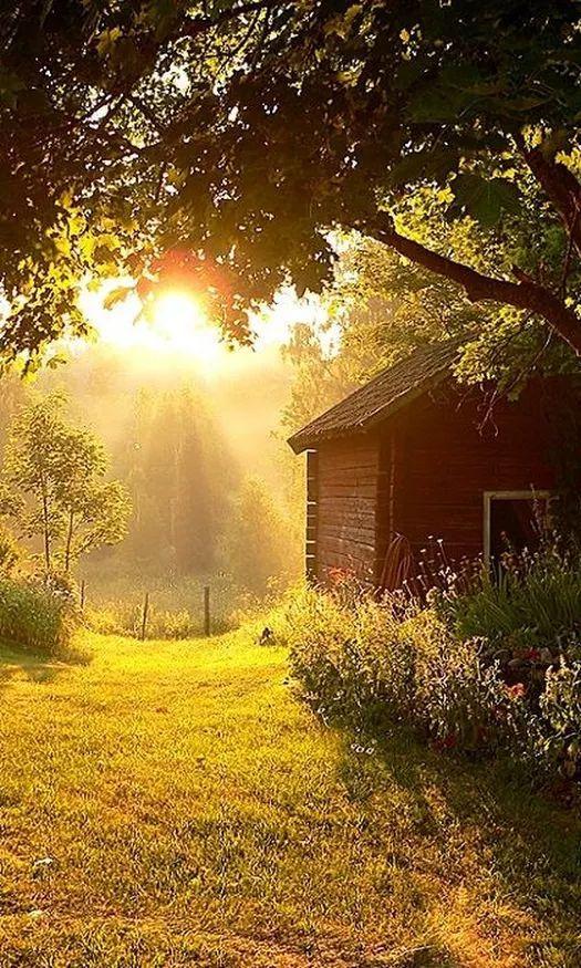 ранних картинки вертикальные утро в деревне четверть лунные дни