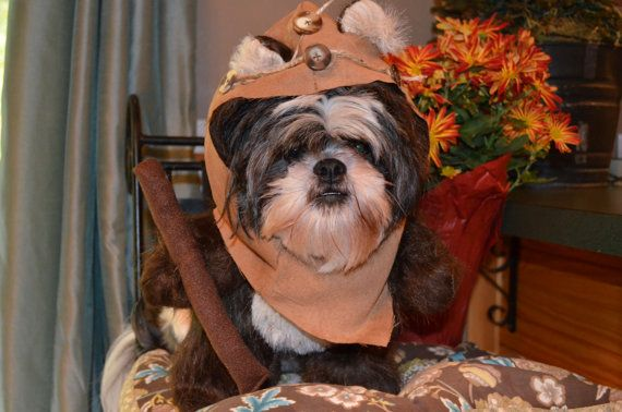 #Ewok Hood/Fur #Dog #Halloween Costume @Erik Rannala Naville -- we need this in our lives!!