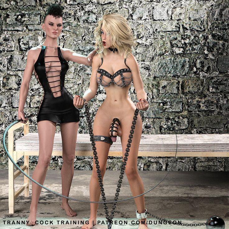 Tranny Dungeon Training  Check out dominatrix Gwenili giving Arianna Tranny some tranny dungeon training lessons. These two are together a lot and you can check them out using their name tags at my...