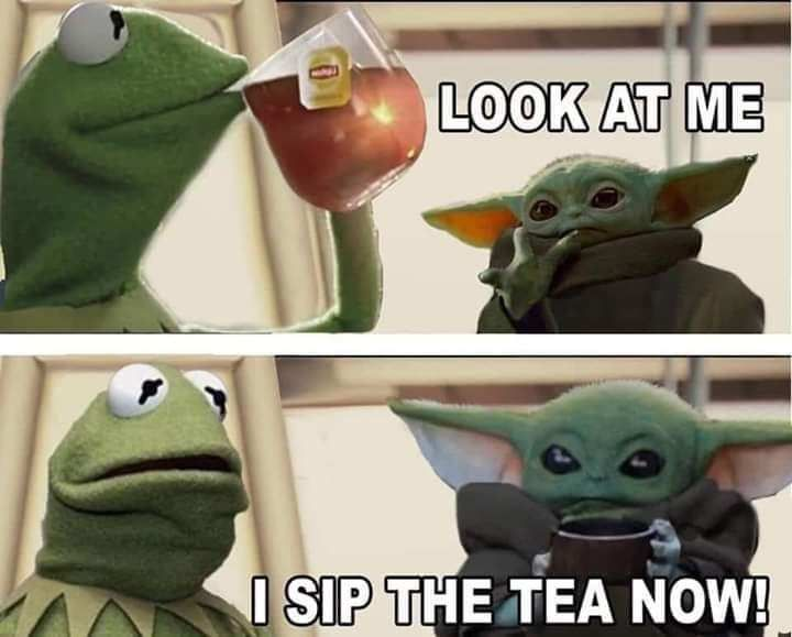 31 Pics And Memes For The Exquisite Minds Yoda Funny Funny Star Wars Memes Yoda Meme
