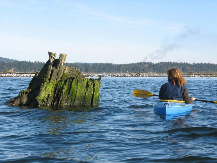 Learn to Kayak and try it somewhere beautiful!