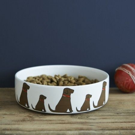 Sweet William Chocolate Labrador Dog Bowl - £19.99