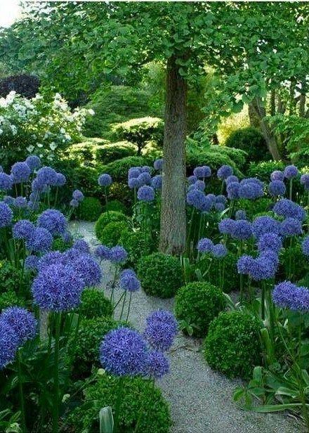 Tuininspiratie is: 's Zomers met mijn tuintijdschriften en een lekker drankje op de loungebank in de tuin. Dat is hoe ik het graag plannen maak voor straks