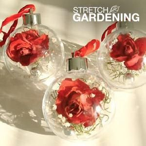 Make this perfect, pretty hostess gift with mini dried roses. Easy, unique and fun to do!