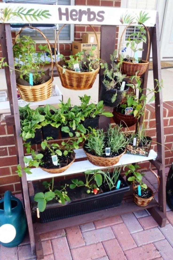 Pin by Jolearra on Balcony Garden | Apartment herb gardens ...