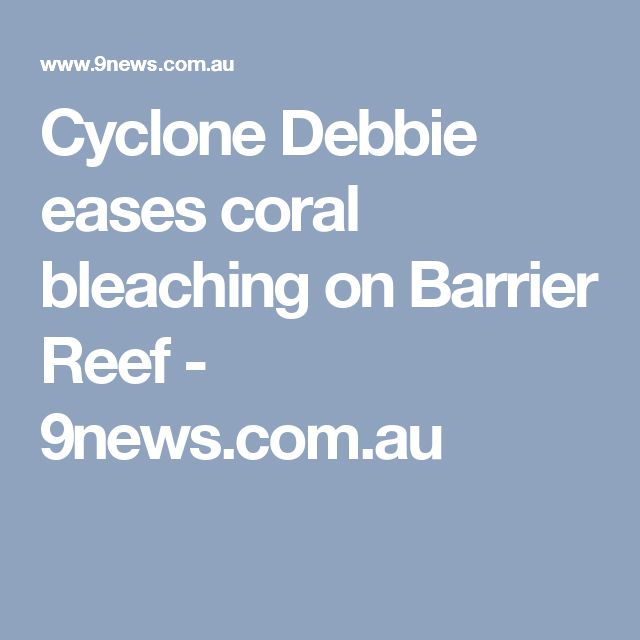 Cyclone Debbie eases coral bleaching on Barrier Reef - 9news.com.au