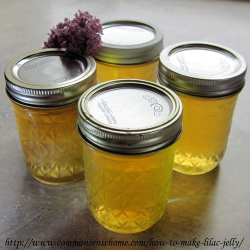 How to Make Lilac Jelly @ Common Sense Homesteading  Lilac Jelly Ingredients  2 c. packed lilac blossoms, no leaves, no stems 2 1/2 c. boiling water  1/4 cup lemon juice – fresh is great if you have it 1/2 teaspoon butter 4 cups sugar One box Sure-jell powdered pectin