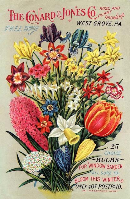 Conard & Jones Fall 1897 garden catalog cover