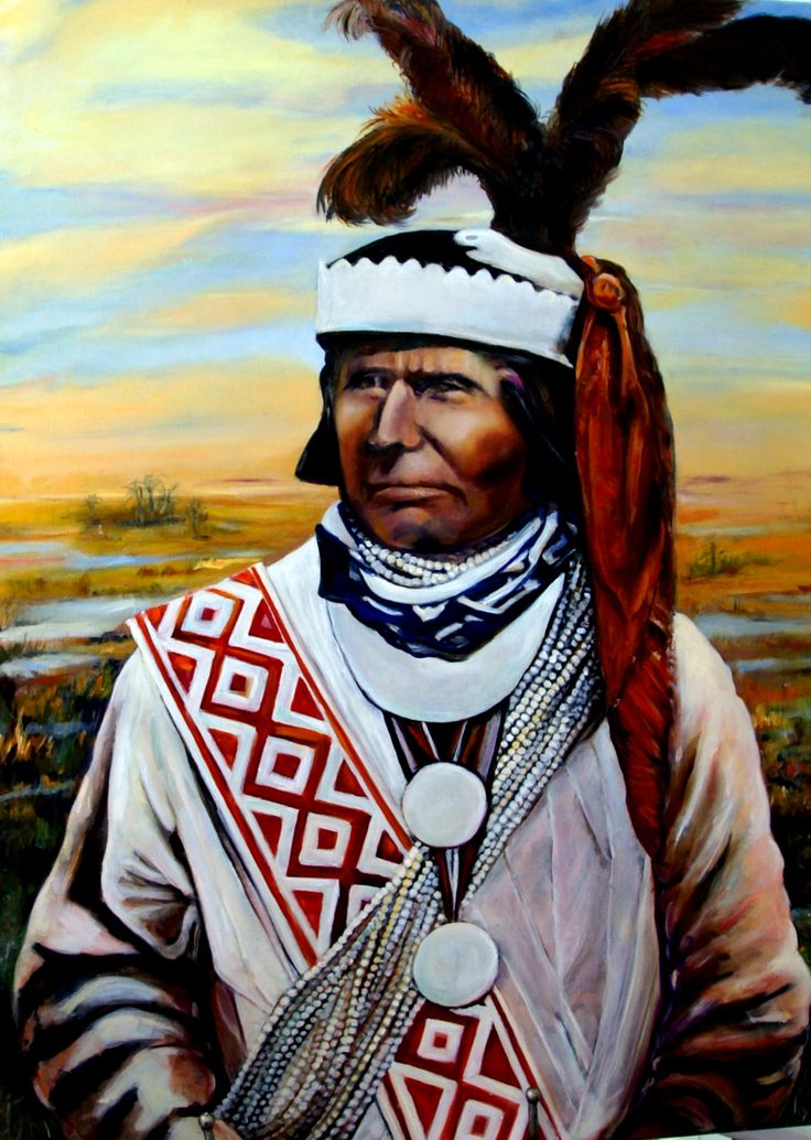 u0027Billy Bowlegsu0027 Seminole Chief. Oil painting by Nadi Reuter  sc 1 st  Pinterest & 42 best Seminoles Mikkosucci etc. images on Pinterest | Native ... 25forcollege.com
