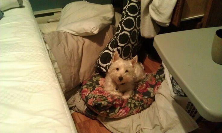 As soon as the blankets hit the floor...