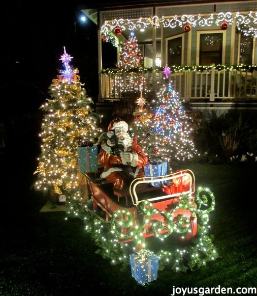1083 Best Christmas Lights Images On Pinterest