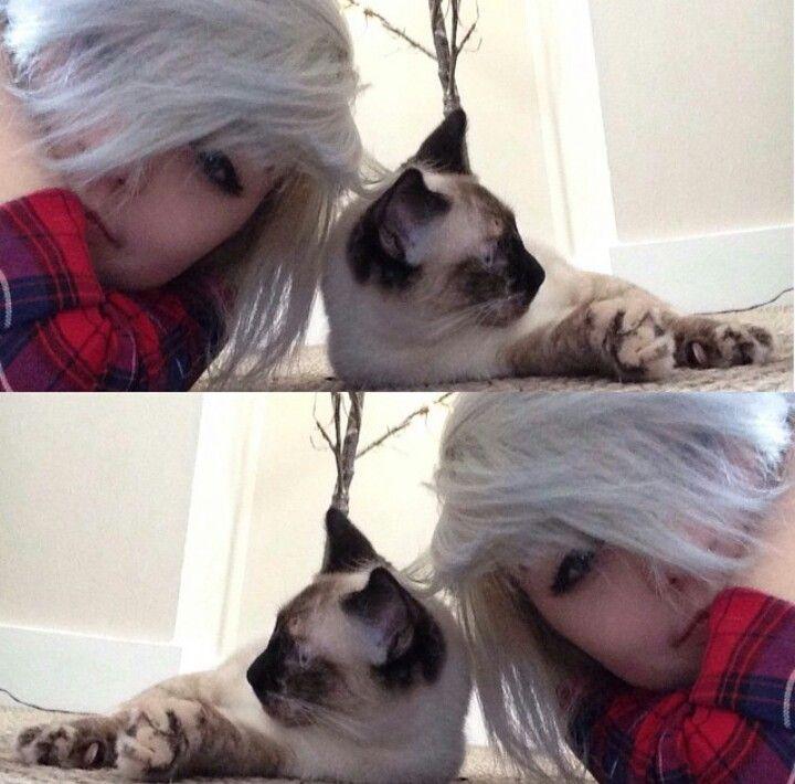 Brianna) *giggles* I found a kitty!!
