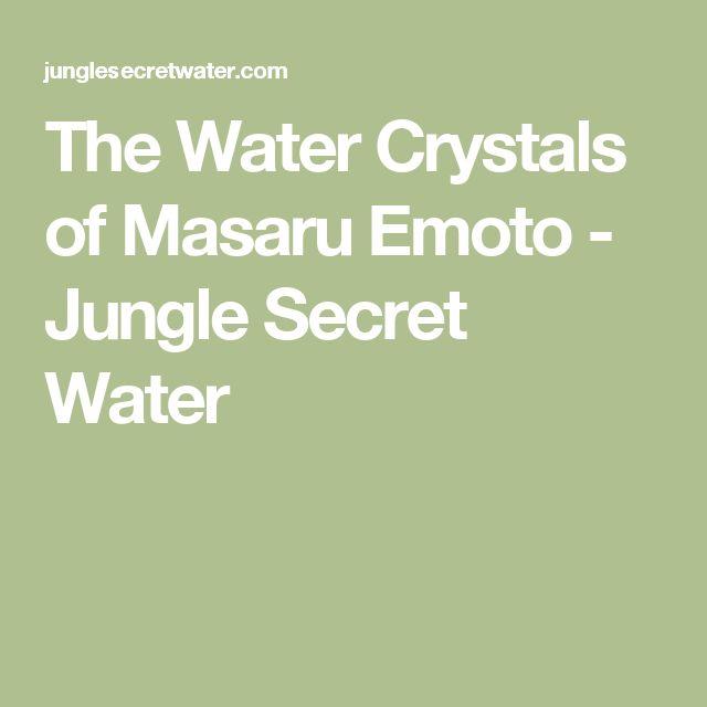 The Water Crystals of Masaru Emoto - Jungle Secret Water