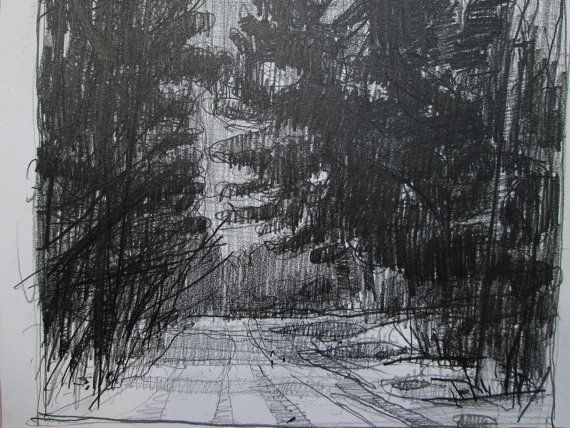 Home Pines February Original Landscape Pencil Drawing by Paintbox