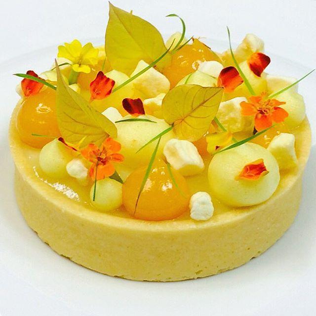 Passion fruit tart #TagsForLikes #Bachour #bachourchocolate #bachourchocolatebook #bachoursimplybeautiful #chocolate #theartofplating #chefstalk #chefsofinstagram #gastroart #antoniobachour #bachour1234