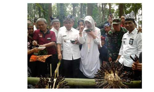 Gombengsari Farm Festival, Ribuan Sate Dibakar Sambil Menyeduh Kopi