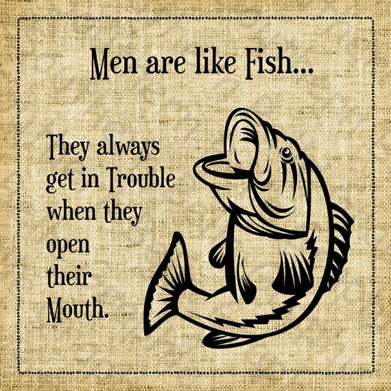 17 best images about barn ideas man cave on pinterest for Funny fish sayings