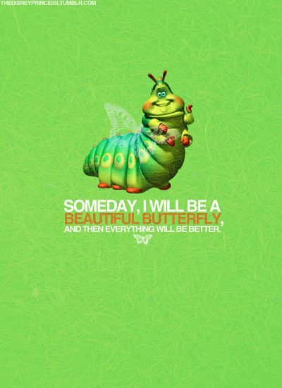 Someday butterfly