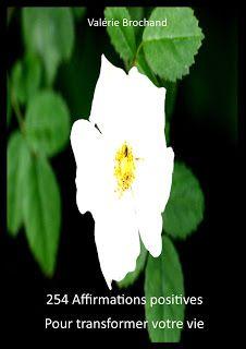 Changer sa vie en changeant ma façon de voir les choses....: 254 affirmations positives pour transformer sa vie...