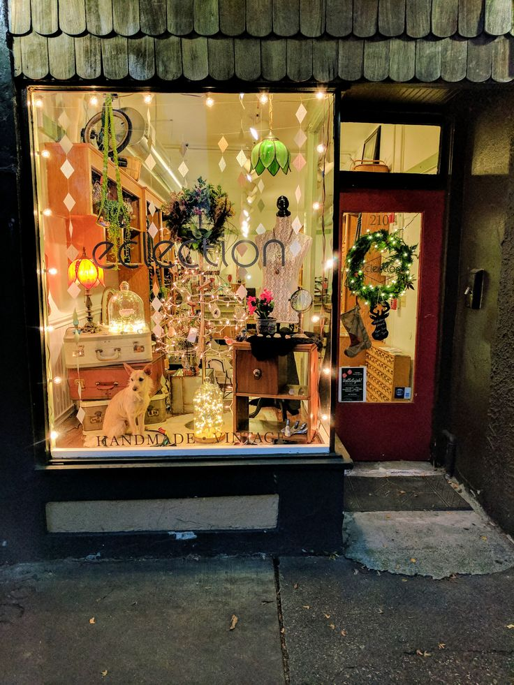 Eclection 210&1/2 4th Ave West  Olympia WA 98501  PC: Jacqueline Pahutski (owner)