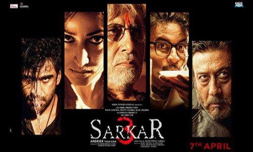 Sarkar 3 Hindi 2017 Full Movie Watch Online HD Download