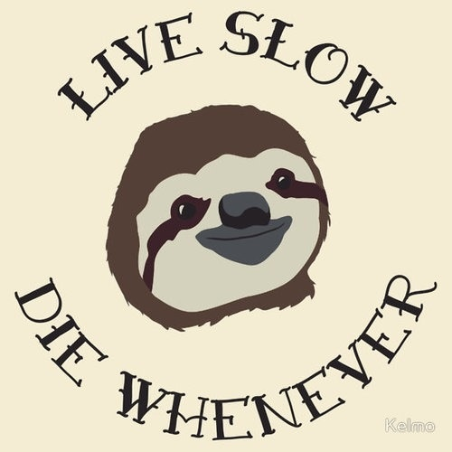 Funny Sloth Poster Art Print - Multiple Sizes Available - Live Slow Die Whenever…