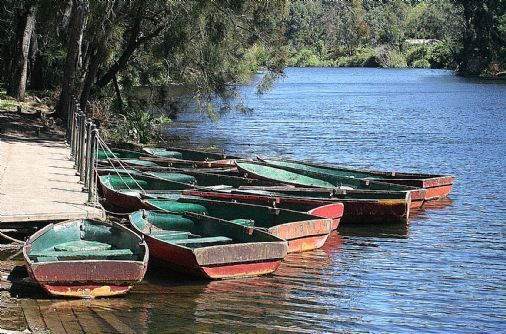 This is a photo of boats for hire outside the Lane Cove National Park boatshed. One of the many scenic views encountered when bush walking through picnic sites along either side of the Lane Cove River through the park and many surrounding suburbs. Photo: Steve Bennett