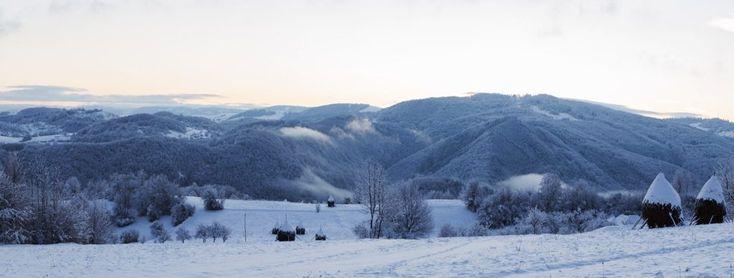 Iarna în Oradea și în Bihor...