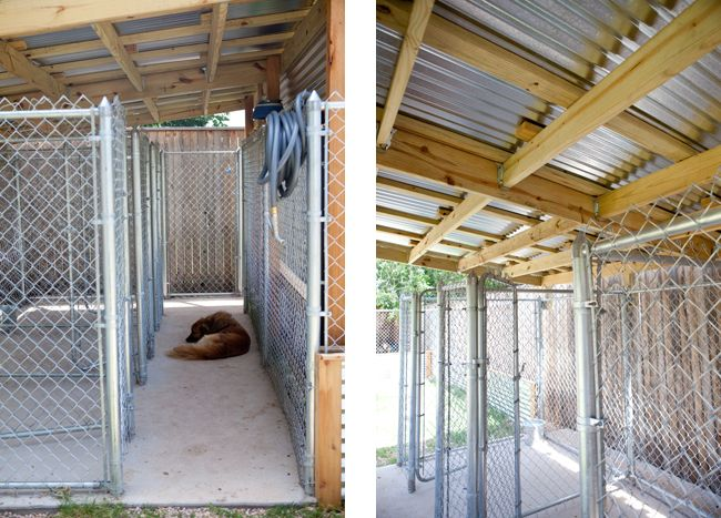 Web5 Kennel Dog Run Shelter With Multiple Bays Home Deco