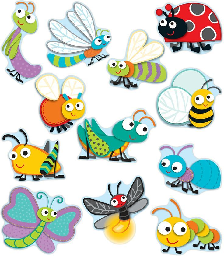 bug bulletin board cutouts - Google Search
