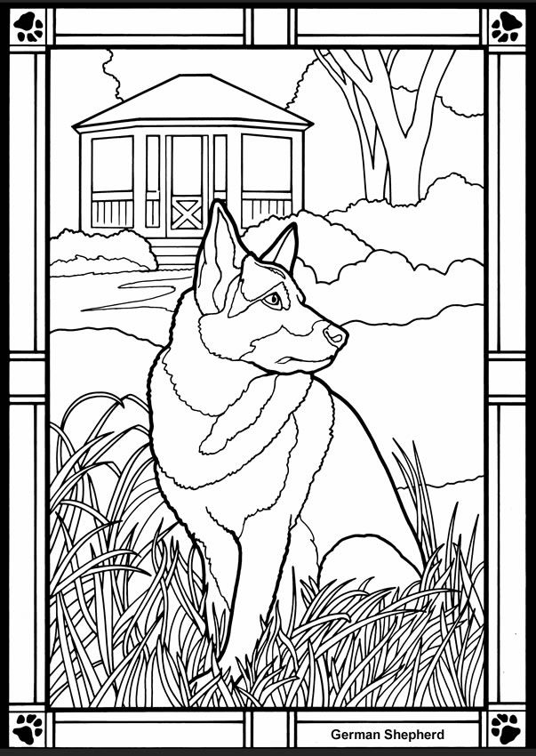 dogs stained glass coloring book dover publications - German Shepherd Coloring Pages Free 3