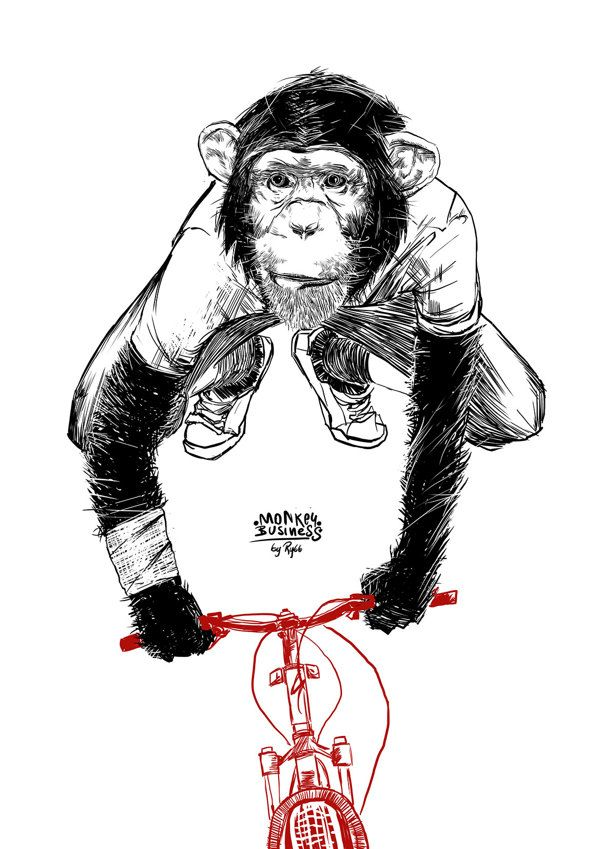 MONKEY BUSINESS by norbert rybarczyk, via Behance