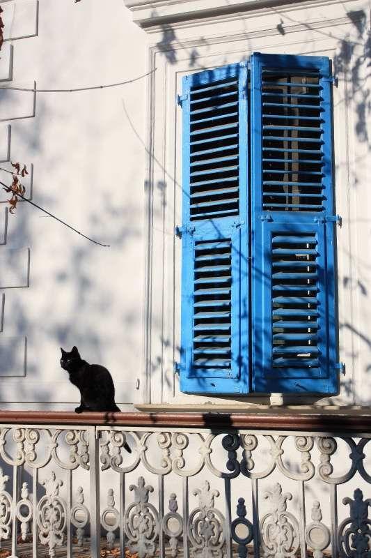 Buyukada - buyukada, Istanbul