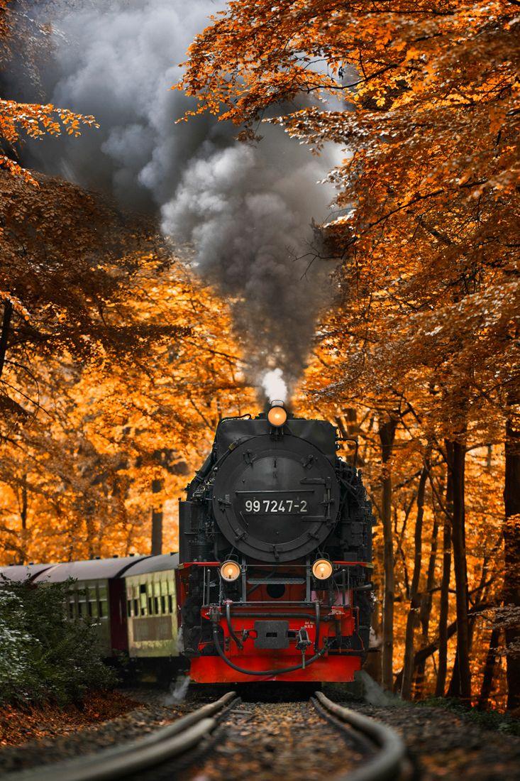Zug - Eisenbahn - Dampflokomotive / Train - Railway - Locomotive - Schiene - Gleis / Rail + Herbst / Autumn / Fall