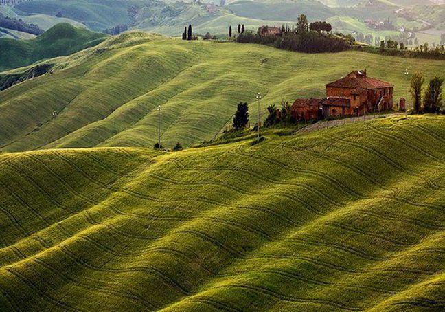 """Άποψη από καταπράσινο κυματιστό """"χαλί"""" στην Τοσκάνη, Ιταλία"""