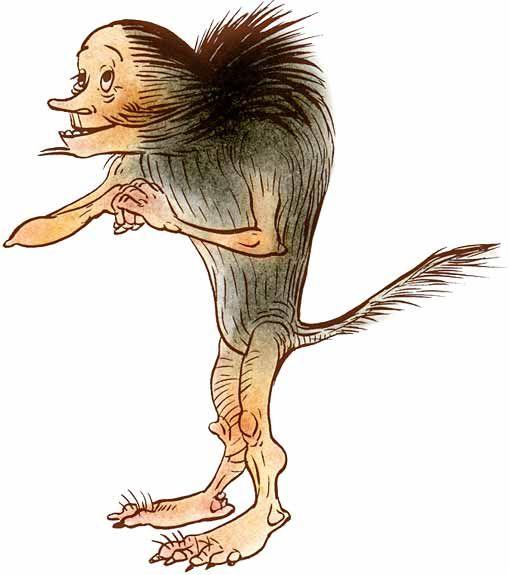 Hiisi on hyvin erikoisen, mutta ystävällisen näköinen otus. Hiidellä on kyhmyiset varpaat, polvet ja kädet sekä turkissa tuuheat niskakarvat ja pitkä häntä.