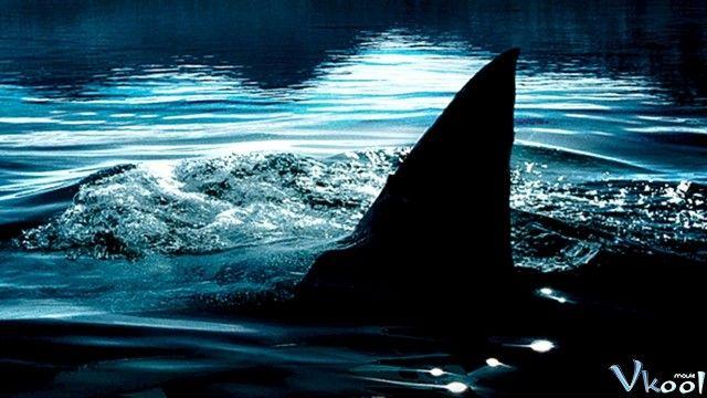 Săn Cá Mập: