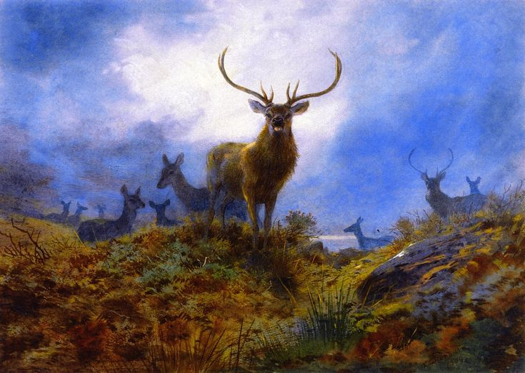 The last chance before dark (1904) by Archibald Thorburn (b. 31 May 1860; Viewfield House, Lasswade, Midlothian, Scotland – d. 9 October 1935; Hascombe, Surrey, England) Watercolor, 26 × 37 cm (10.24 × 14.57 in.) Private Collection https://en.wikipedia.org/wiki/Archibald_Thorburn